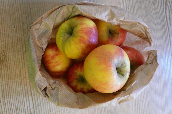 Apfel Sorte Topaz
