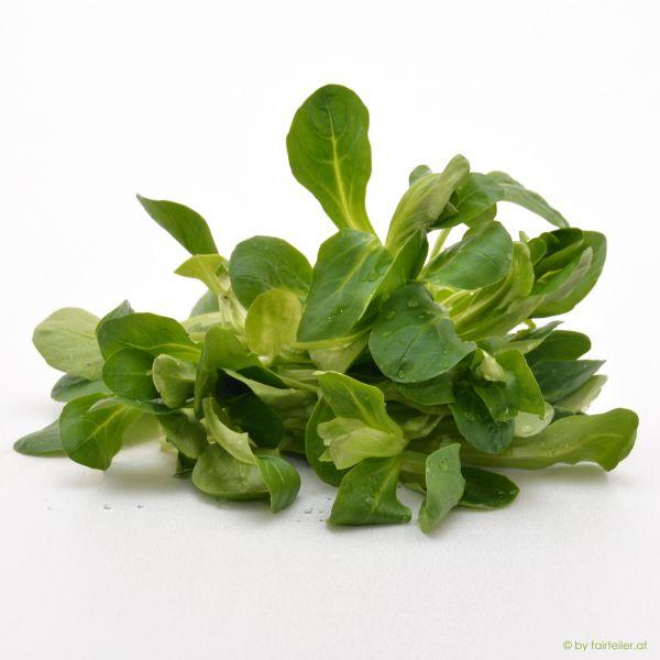 Salat Vogerlsalat
