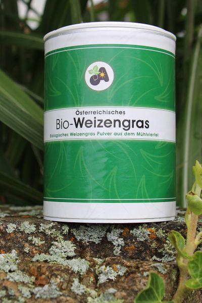 Weizengraspulver