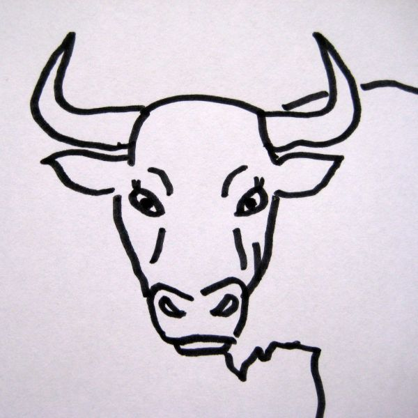 Schulter vom Ochsen